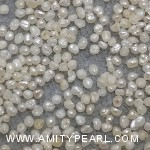 6456 flat pearl about 1.25-1.5mm.jpg